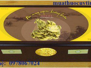 thuốc an cung rùa vàng mua ở đâu, thuốc an cung rùa vàng giá bao nhiêu