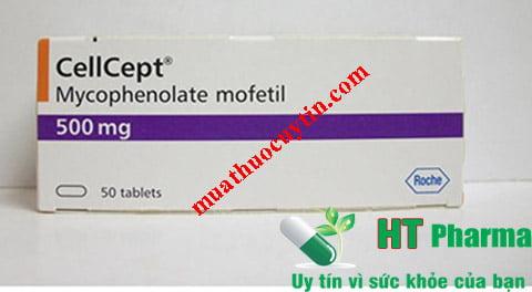 Thuốc Cellcept 500mg mua ở đâu, thuốc Cellcept 500mg giá bao nhiêu