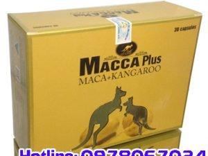 thuốc macca plus giá bao nhiêu, thuốc macca plus mua ở đâu